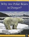 Why Are Polar Bears in Danger?