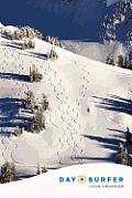 Day Surfer Login Organizer (Fresh Tracks on the Mountain)
