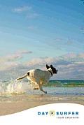 Day Surfer Login Organizer (Dog Running on the Beach)