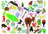 Charley Harpers Animal Kingdom