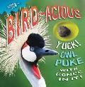 Bird-Acious