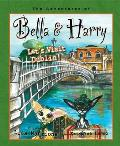 Adventures of Bella & Harry #11: Let's Visit Dublin!: Adventures of Bella & Harry
