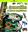 Les Grenouilles Et Autres Amphibiens