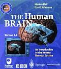 The Human Brain: An Introduction to the Human Nervous System
