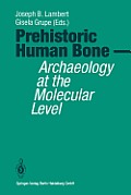 Prehistoric Human Bone: Archaeology at the Molecular Level