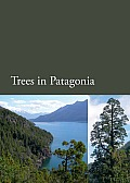 Trees in Patagonia