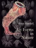 Art Forms In Nature the Prints of Ernst Haeckel