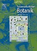 Systematik-Poster: Botanik