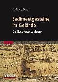 Sedimentgesteine Im Gelande: Ein Illustrierter Leitfaden