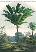 Palms - 2012 Cover
