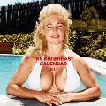 The Big Breast Calendar - 2015