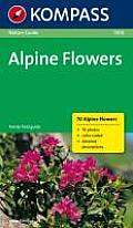Nature Guide Alpine Flowers