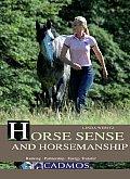 Horse Sense and Horsemanship: Ranking, Partnership, Energy Transfer