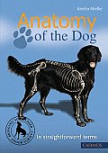 Anatomy of the Dog: In Straight Forward Terms