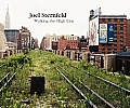 Joel Sternfeld: Walking the High Line Cover