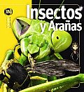 Insectos Y Aranas/ Insects and Spiders
