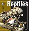 Insiders Reptiles/ Insiders Reptiles