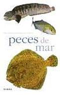 Peces De Mar / Sea Fishes