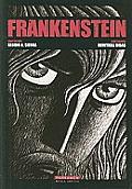 Frankenstein (Novela Grafica)