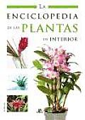 La Enciclopedia De Las Plantas De Interior/ the Houseplants Encyclopedia