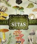 Atlas Ilustrado de Las Setas (Atlas Ilustrado)