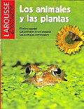 Los Animales Y Las Plantas / the Animals and the Plants