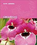 Orquideas (Blume Jardineria)