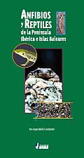 Anfibios Y Reptiles De La Peninsula Iberica E Islas Baleares/ Amphibious and Reptiles From the Iberian Peninsula and  the Balearic Islands