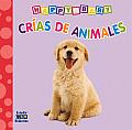 Crias de Animales = Spawn of Animales (Happy Baby)