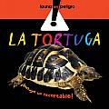 La tortuga / The Turtle