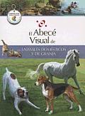 El Abece Visual de Los Animales Domesticos y de Granja (the Illustrated Basics of Domestic and Farm Animals) (Abece Visual)