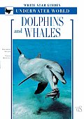 Dolphins and Whales: White Star Guides Underwater World