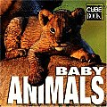 Baby Animals (Minicube)