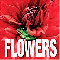 Flowers (Minicube Minicube)