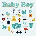 Baby Boy My First Year