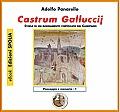 Castrum Galluccij - Storia di un insediamento fortificato del Casertano
