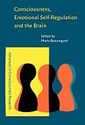 Consciousness, emotional self-regulation, and the brain