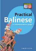 Practical Balinese: A Communication Guide