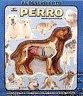 El Perro/ Uncover a Dog