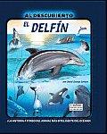 El Delfin/ the Dolphin