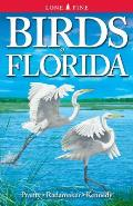 Birds of Florida Cover
