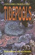 Exploring Pacific Coast Tedepools