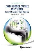 Carbon Dioxide Capture and Storage: Current Status and Future Prospects (Materials and Energy)