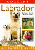 Labrador An Owners Guide Collins