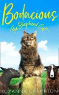 Bodacious: The Shepherd Cat