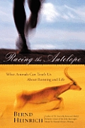 Racing The Antelope What Animals Can Teach Us About Running & Life
