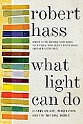 What Light Can Do Essays on Art Imagination & the Natural World