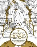 Fantastic Beasts & Where to Find Them Magical Characters & Places Coloring Book