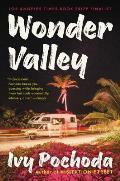 Wonder Valley A Novel