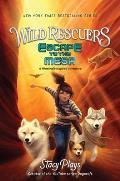 Escape to the Mesa: Wild Rescuers #2
